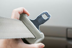 Fasten the car seat belt Stock Photo