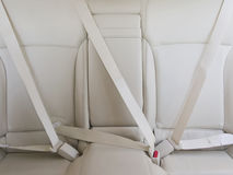 Fasten seat belts in the car for safety. Fasten seat belts in the car for your safety royalty free stock image