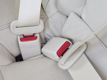 Fasten seat belts in the car for safety. Fasten seat belts in the car for your safety Royalty Free Stock Photo