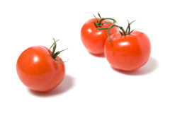 Fasten tomato isolated on the white background. Tomato isolated on the white background Royalty Free Stock Photos