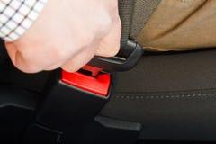 Fastening seat belt Stock Image