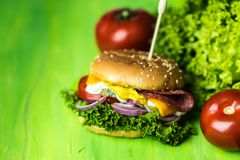 Fastfood can be tasty - tasty cheesburger with a large number of vegetables, mustard, mayonnaise, salami and purple onion rings royalty free stock images