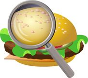 Fastfood de Examing Imagens de Stock Royalty Free