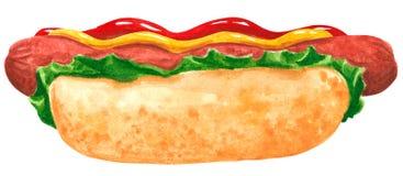 Fastfood, hotdog met saladebladeren, ketchup en mosterd, hand getrokken waterverf vector illustratie