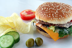 Fastfoods. Isolated Fastfoods on dish with olives & salad royalty free stock photography