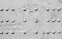 Fastnitat med knapp-huvudet nitar detaljen för metallplattan av en bro som målas i grå färger royaltyfri bild