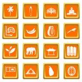 Fastställd apelsin för Sri Lanka loppsymboler royaltyfri illustrationer