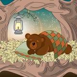 Fastställd DRÖMMA BJÖRN för djur vektorillustration royaltyfri illustrationer