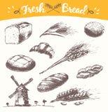 Fastställd för illustrationvete för nytt bröd dragen vektor royaltyfri illustrationer
