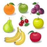 Fastställd frukt Fotografering för Bildbyråer