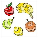 Fastställd frukt Royaltyfria Bilder