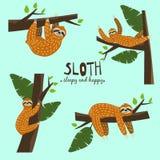 Fastställd gullig rolig sengångare som hänger på trädet Sömnigt och lyckligt Förtjusande hand dragen tecknad filmdjurillustration royaltyfri illustrationer