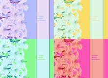 Fastställd modell som är ljus för ett kort med liljan också vektor för coreldrawillustration Royaltyfria Foton