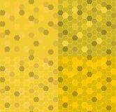 Fastställd sömlös ljus honungskakahonung också vektor för coreldrawillustration Royaltyfri Foto