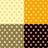 Fastställd sömlös modell av orange blommor också vektor för coreldrawillustration Arkivfoto