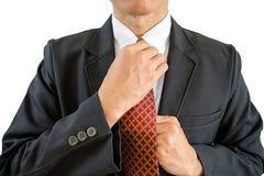 Fastställd slips för man royaltyfri foto