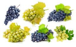 Fastställda blåa och gröna druvor med bladet arkivbild