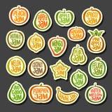 Fastställda färgrika fruktdriftstoppsymboler Royaltyfri Fotografi