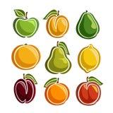 Fastställda färgrika fruktsymboler för vektor Arkivbilder