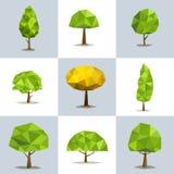 Fastställda polygonal träd med olika kronor Arkivbilder
