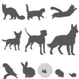 Fastställda symboler för husdjurkonturer  Arkivbilder