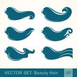 Fastställda symbolsprofiler för vektor av flickor med långt hår Arkivfoton