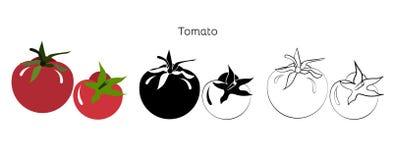 Fastställda tomater för vektor på en vit bakgrund Royaltyfri Bild