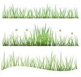 Fastställdt gräs Fotografering för Bildbyråer