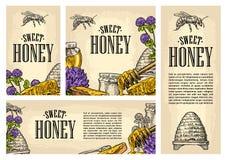 Fastställt horisontal, lodlinje och fyrkant och affischer med honung vektor illustrationer