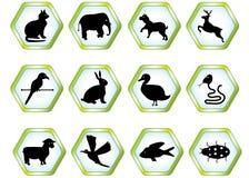 Fastställda djur Arkivbild
