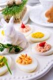 faszerowane jajka Zdjęcie Stock