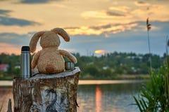 Faszerujący królik z termosem na jeziorze kosmos kopii fotografia stock