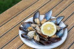 Faszerujący Mussels z cytryną Obrazy Royalty Free
