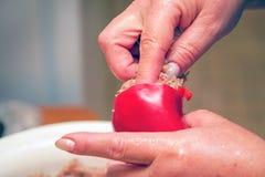 Faszerujący z minced mięsa dzwonkowym pieprzem kulinarny jedzenie obraz stock