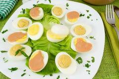 faszerujący gotowani jajka Zdjęcia Royalty Free
