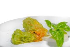 Faszerujący zucchini kwiat. Obrazy Stock