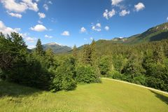 Faszinieren, Großformatarten von grünen Wiesen, Ränder und das Holz alpin die Vorberge in der Sommerzeit lizenzfreies stockbild