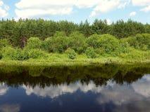 Faszinierende Ausdehnung von Waldfluß Stockfoto