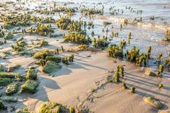 Faszinierendes Bild des Zerfalls am Rand eines Flusses Lizenzfreie Stockfotos