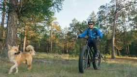 Fat bike also called fatbike or fat-tire bike in summer riding in the forest. Stock Photo