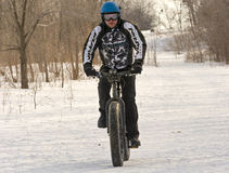 Fat bike on a snow trail Stock Images