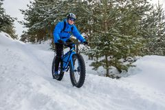 Fat bike. Fat tire bike. A young man riding fat bicycle in the winter. A young man riding fat bicycle in the winter. winter biking. Fatbike. Fat tire bike royalty free stock images