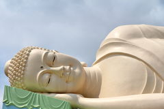 Fat Buddha head Royalty Free Stock Images