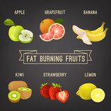 Fat burning fruits. Colourful vector illustration isolated on a dark grey background Stock Photo