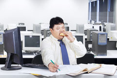 Fat businessman working while eating Stock Image