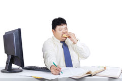 Fat businessman working while eating 1 Royalty Free Stock Photography