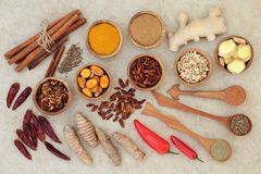 Fat Busting Spices for Losing Weight royalty free stock images