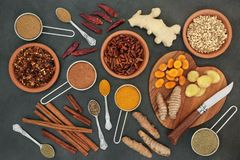 Fat Busting Spices for Losing Weight royalty free stock photos