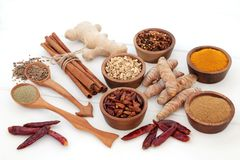 Fat Busting Spices for Losing Weight royalty free stock image