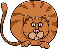 Fat cat character cartoon illustration Royalty Free Stock Photography